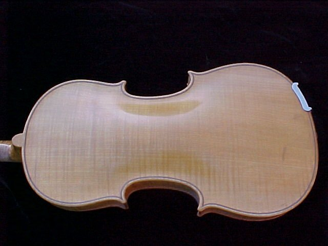 pic of blonde violin