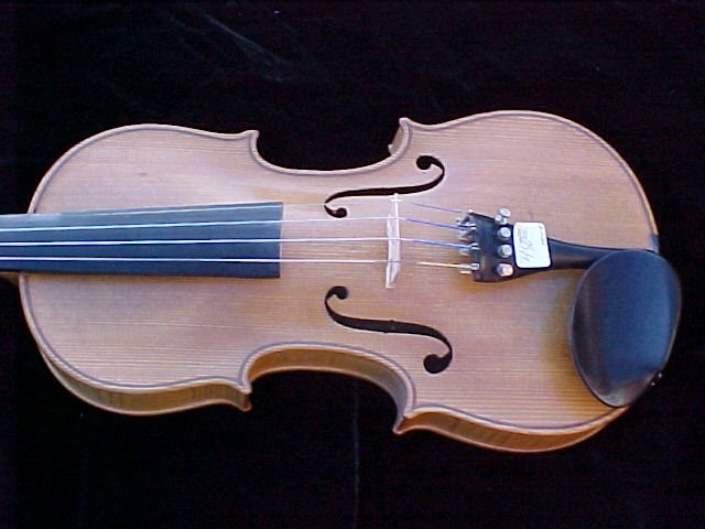 pic of blonde violins